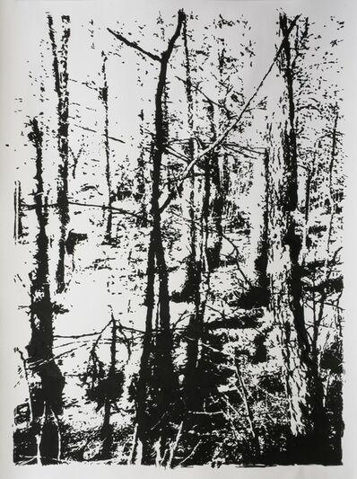Heribert C. Ottersbach, 'Totes Holz', 2012