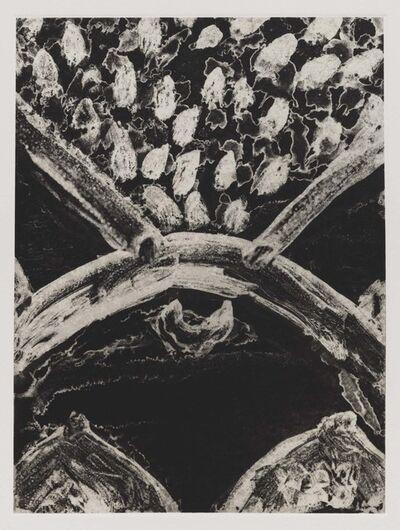 Luchita Hurtado, 'Untitled (Birth Print C)', 2019