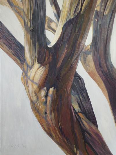 Gillian Bradshaw-Smith, 'Finding Daphne #24', 2014