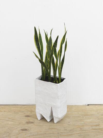 Amber Renaye, 'Planter', 2016