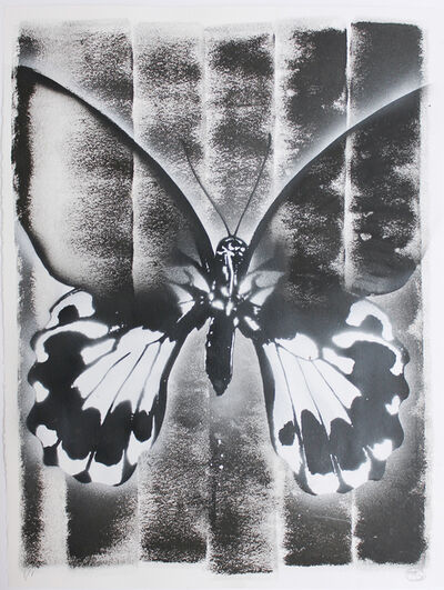 Nick Walker, 'Butterfly abstraction 02', 2019