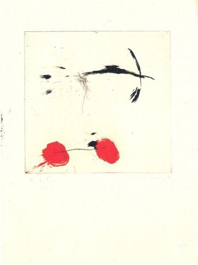 Riera i Aragó, 'Avió petit rodes vermelles', 1990
