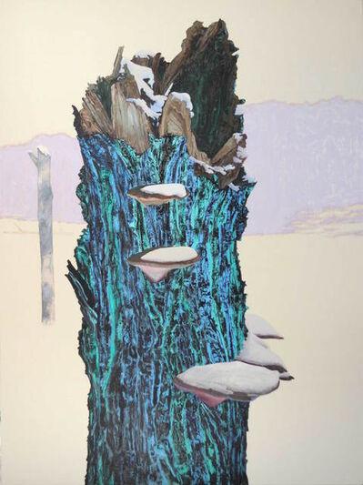 Ray Cicin, 'Charred, Beef Tea Creek'