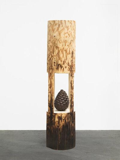 Claudia Comte, 'The Pinecone', 2018