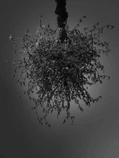 Petah Coyne, 'Untitled #1459 (Yōko Ogawa: The Memory Police)', 2019