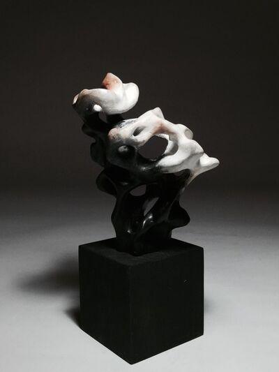 Zhao Meng 趙夢, 'Impression of Taihu Stone 太湖石印象', 2015