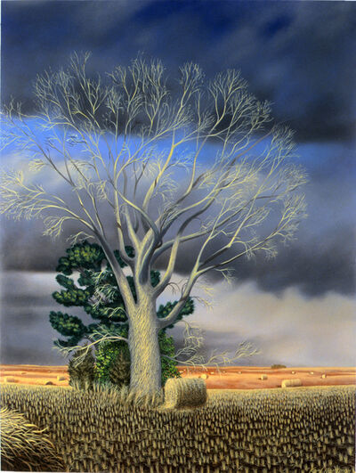 Karl Hartman, 'Bare Cottonwood', 2011