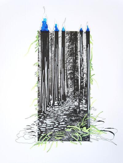 Suchitra Mattai, 'Redwoods', 2019