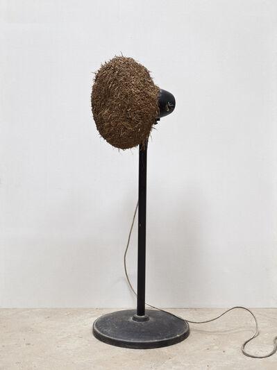 Yan Bing, 'Wind - Aridity ', 2010