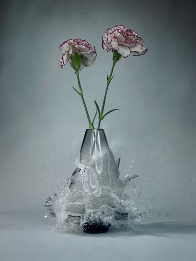Martin Klimas, 'Dianthus 2 ', 2009