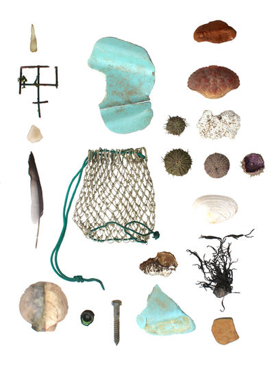 Richelle Gribble, 'Objects of Land and Sea III', 2016