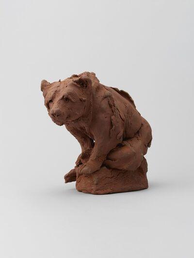 Stephanie Quayle, 'Larger Bear Study'