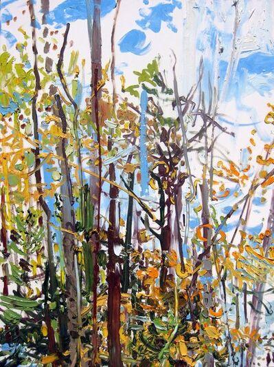 Lilian Garcia-Roig, 'Fall Blue', 2009