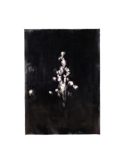 Alexandra Karakashian, 'Bloom III', 2021