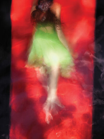 Barbara Cole, 'Chartreuse on Red Field, from Chromatics', 2010