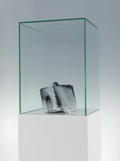 Jakob Mattner, 'Frozen Camera', 2003