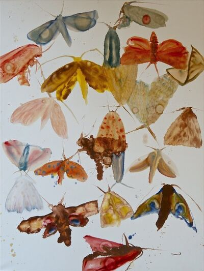 Allyson Reynolds, 'Moths 2', 2009