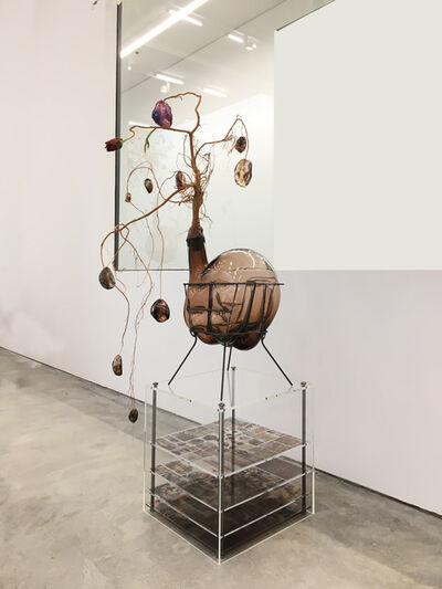 Jesse Krimes, 'Of Beauty and Decay; or, not (brown I)', 2018