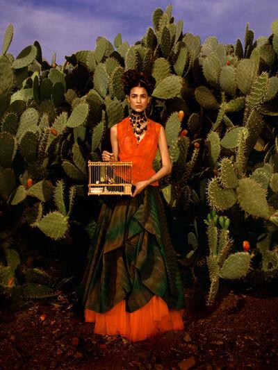 Albert Watson, 'Frida Kahlo Story, 'Birdcage,' Marrakech, Morocco', 1998
