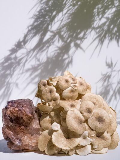 Carolyn Carr, 'Quartz Mushroom Maple', 2018