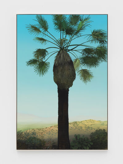 Jake Longstreth, 'In Glendale (Palm 3) ', 2020