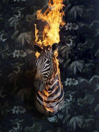 Christian Houge, 'Zebra', 2018