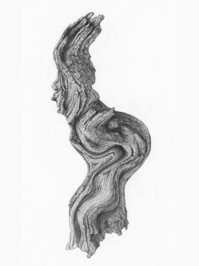 Petecia Le Fawnhawk, 'Wise Old Medicine Woman', 2016