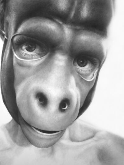 Melissa Cooke, 'Self Portrait as Gorilla', 2008