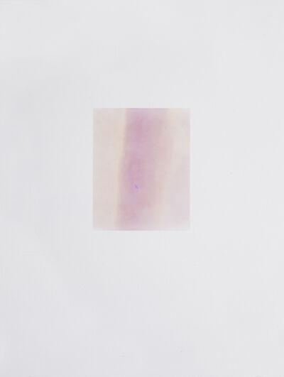 Justine Varga, 'Vinegar', 2011