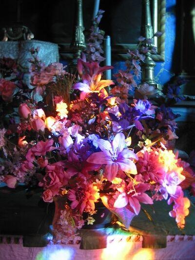 Alberto Magrin, 'Floral decomposition', 2014