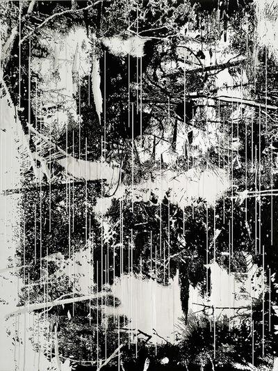 Yehudit Sasportas, 'Raw Material Nr. 1', 2015