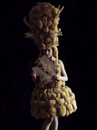 Melissa Meier, 'Sponge', ND