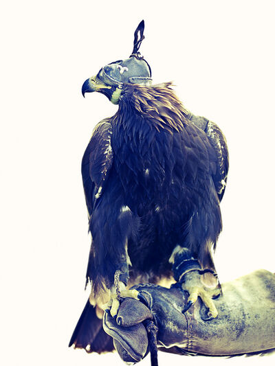 Lyle Owerko, 'Eagle Hunter 10 ', 2015