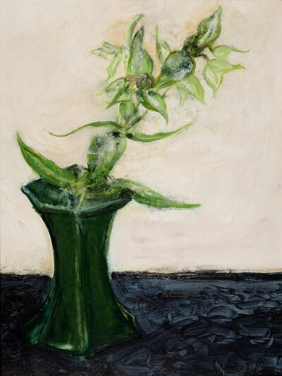 Camille Souter, 'Caper Spurge from Armagh', 1979