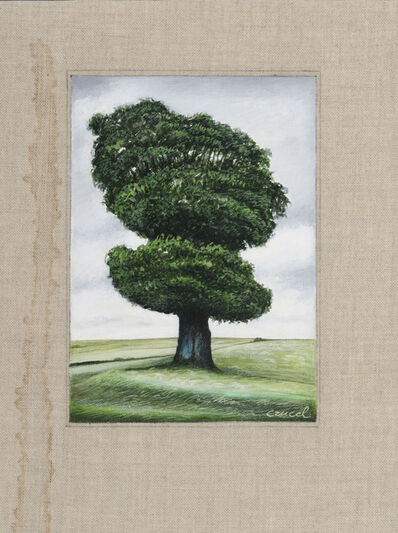 Manuel Cancel, 'Tree #4'