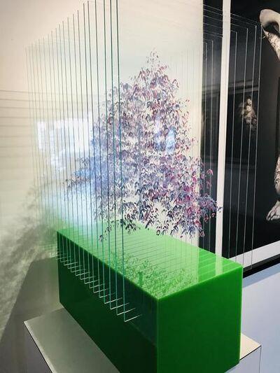 Ardan Özmenoğlu, 'Purple Tree', 2019