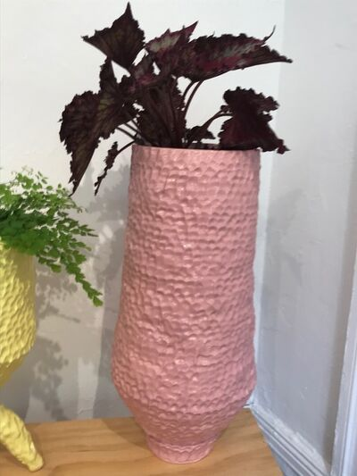 Sean Gerstley, 'Large Pink Planter', 2018
