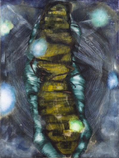 Magdalena West, 'Was bedeutet ein Holzwurm?', 2013