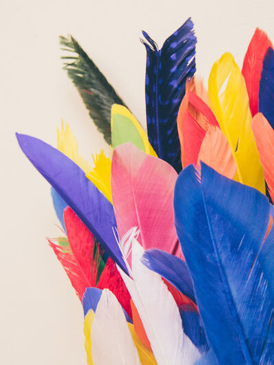 Maria Piessis, 'Feather or Not 11'