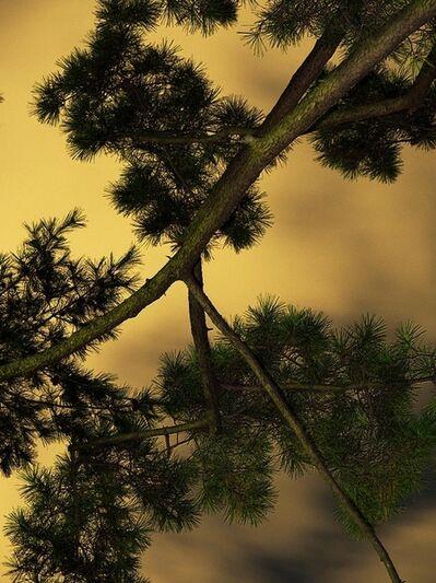Yoshinori Mizutani, 'Moon Light 006', 2014
