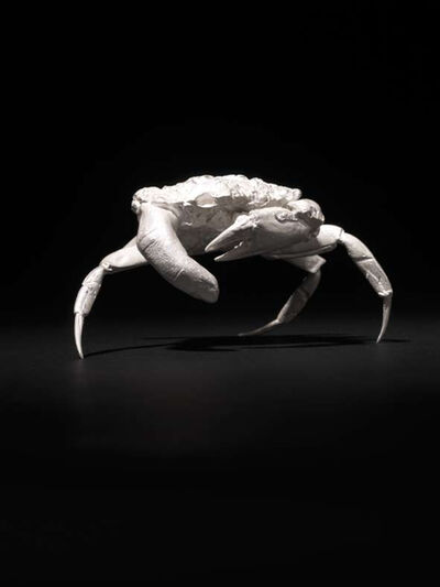 Dorothy Cross, 'Finger Crab ', 2011