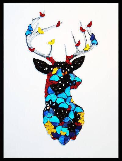 SN, 'Deer', 2019