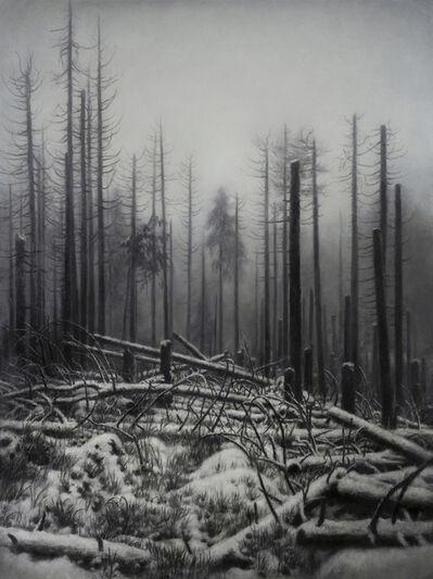 Jaco van Schalkwyk, 'Nemora VII', 2018