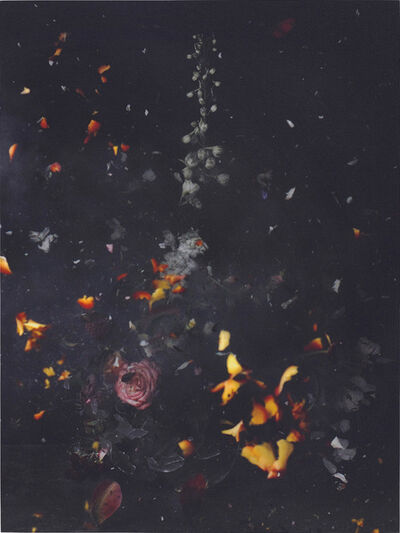 Ori Gersht, 'Time after Time, Untitled No.12', 2007