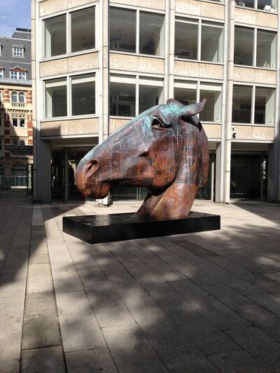 Nic Fiddian-Green, 'Trojan head, Copper', 2016