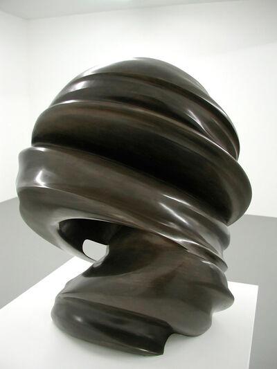 Tony Cragg, 'Secret thoughts', 2002
