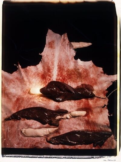 Helen Chadwick, 'Meat Abstract No. 3: Liver', 1989