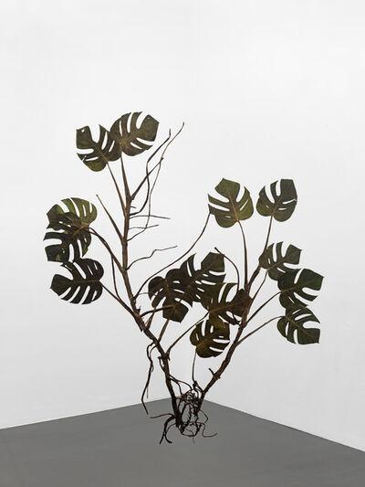 Julius von Bismarck, 'I like the flowers (Monstera deliciosa)', 2017