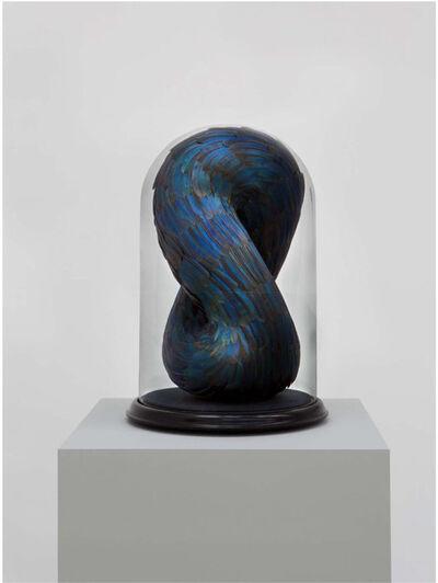 Kate MccGwire, 'Whorl', 2013