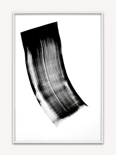 Phil Chang, 'Replacement Ink for Epson Printers (Black 446004) on Epson Premium Glossy Paper', 2014